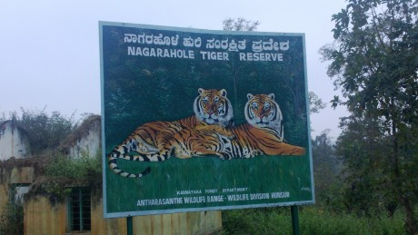 Udayagiri and Mysore 031