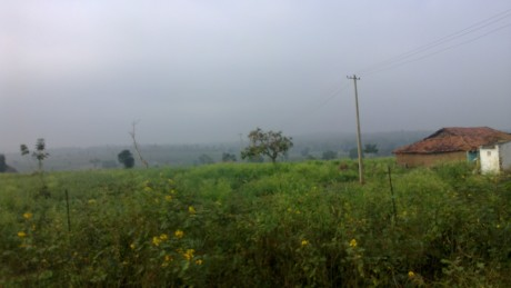 Udayagiri and Mysore 033