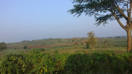 Udayagiri and Mysore 112